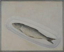 Вальран Валерий «Рыба на блюде»; 40х50; х/м; 1994 год